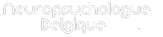Neuropsychologue Belgique